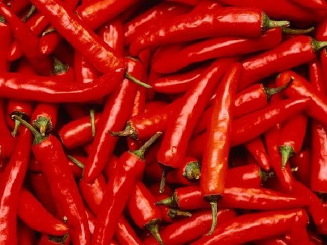 Ớt đỏ, loại gia vị cay quen thuộc của người Việt Nam