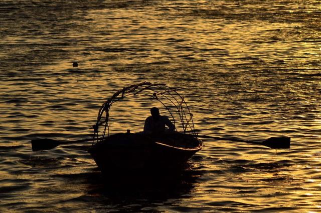 Ngư dân đánh cá trên sông Yamuna, Ấn Độ