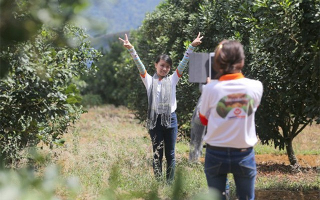 Các sinh viên Đại học Ngân hàng Tp.HCM, trong một chuyến tìm hiểu thực tế trồng mắc-ca tại Tây Nguyên.