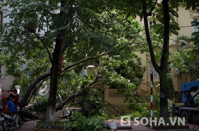 Sự việc xảy ra vào lúc 9h ngày 16/5, sau trận mưa dông, tại một nhà hàng nằm tại địa chỉ số 17, phố Phan Chu Trinh. Rất may không có bị thương.