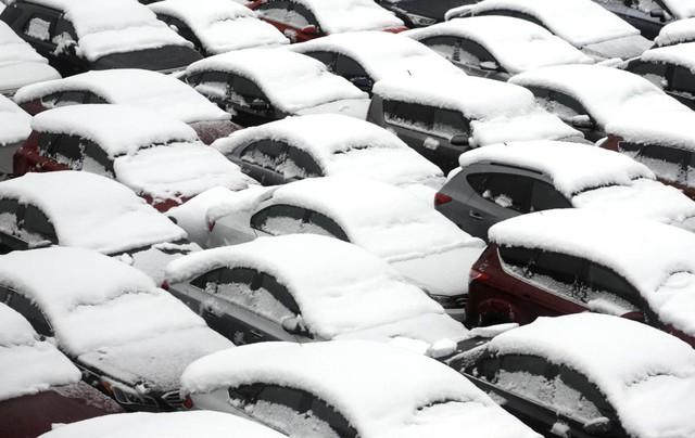 Những chiếc ô tô bị phủ kín bởi tuyết tại một bãi đỗ xe ở thành phố Chicago, bang Illinois, Mỹ.