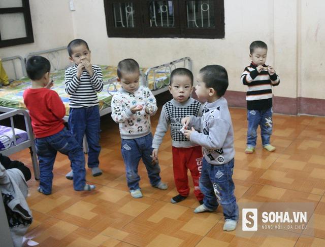 10 bé trai từ khi được đưa về Trung tâm bảo trợ xã hội có hoàn cảnh đặc biệt khó khăn tỉnh Quảng Ninh chăm sóc đều rất khỏe mạnh và ngoan ngoãn.