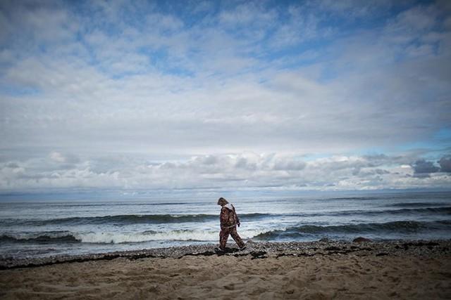 Một phụ nữ tìm hổ phách dạt vào bờ biển Baltic tại Kaliningrad.