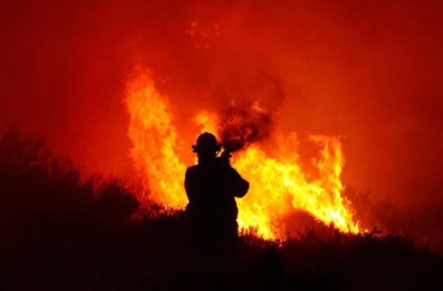 Lính cứu hỏa cố gắng dập tắt một đám cháy rừng ở Cape Town, Nam Phi.