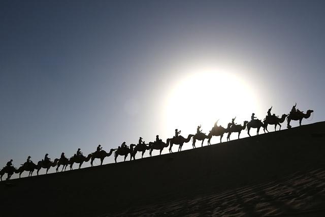 Đàn lạc đà chở du khách đi trên sa mạc ở tỉnh Cam Túc, Trung Quốc.
