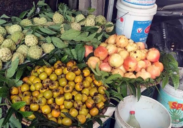 Ra đến chợ lẻ, lựu, hồng Trung Quốc biến thành hàng Việt Nam