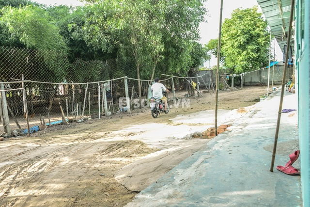 Phùng Ngọc cư trú ở một khu trọ nghèo gồm 5,6 hộ dân.