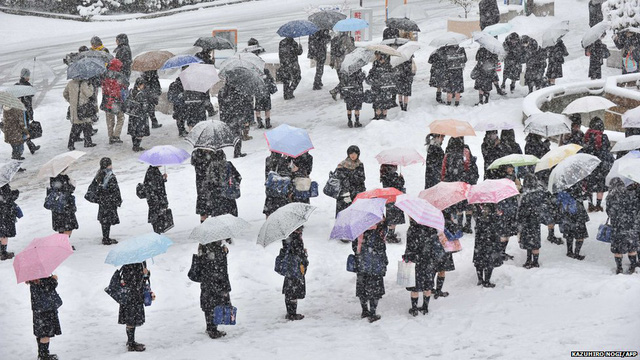 Người Nhật Bản xếp hàng ở mọi nơi công cộng, không bao giờ có tình trạng chen lấn, xô đẩy, dù đó là thời điểm mưa gió hay khủng hoảng nhất.
