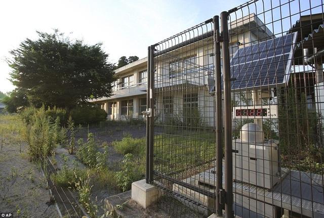 Mỗi nhà đều có một thiết bị đo phóng xạ riêng để đảm bảo an toàn.