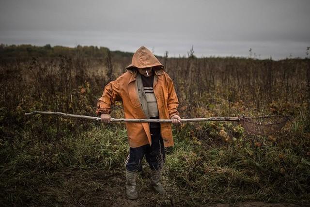 Thợ đào cầm lưới lọc hổ phách trong đầm.