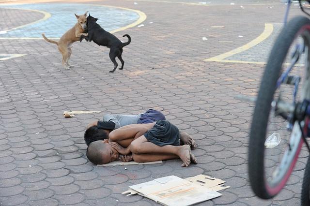 Những đứa trẻ vô gia cư ngủ trong một công viên ở thành phố Manila, Philippines.