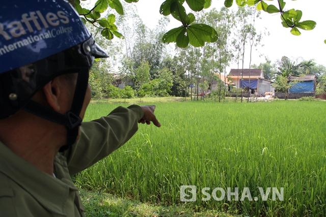 Con đường vận chuyển hàng hóa đi qua chính giữa làng Hạ Lội nay dã được xây dựng lại các căn nhà mới khang trang.