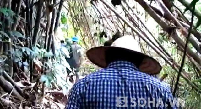 Lực lượng chức năng đang băng rừng vào hiện trường vụ thảm sát kinh hoàng.
