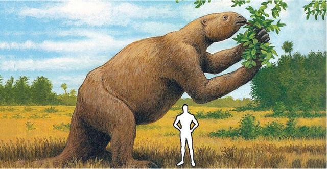 So sánh kích thước với con người