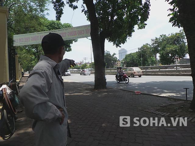 """Ông Nguyễn Văn H. làm nghề vá xe trên đường Lê Duẩn cho hay: """"Cách đây vài ngày đã xuất hiện những vết 'lạ' trên một số thân cây ở khu vực này nhưng đó là những vết cạo xung quanh vết cạo cũ..."""""""