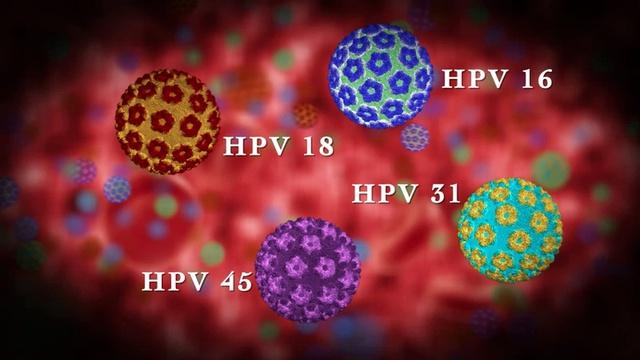 Các chủng HPV gây u nhú ở người