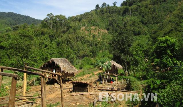 Lán trại của gia đình ở trong rừng - nơi xảy ra vụ án mạng kinh hoàng.