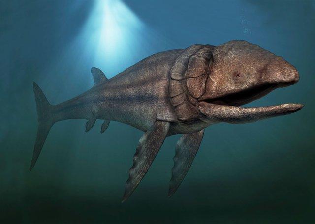 Cá Leedsichthys - Loài này chiều dài gần 16 m và trọng lượng khoảng 50 tấn