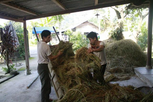 Ngoài thời gian học tập và làm việc, Mai Trần Lâm còn phụ giúp cha mẹ công việc đồng áng.