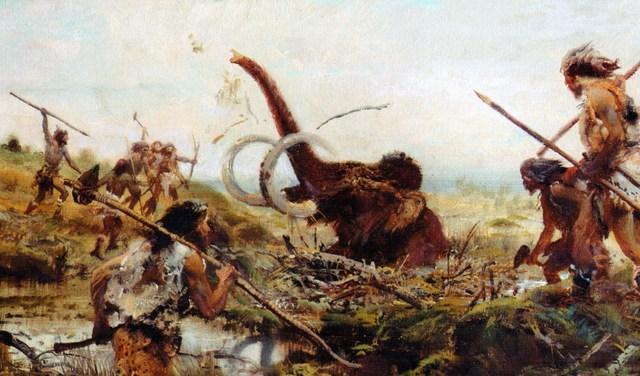 Voi Ma mút bị săn bắt lấy ngà và thịt