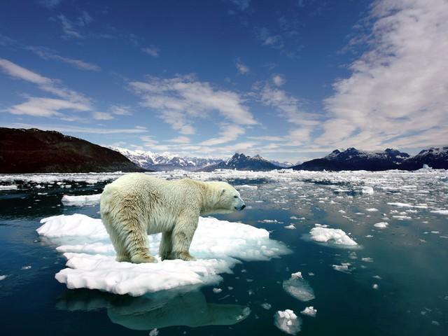 Năm 2033 - Băng ở các vùng cực sẽ tan chảy. Mực nước ở Thái Bình Dương sẽ dâng cao.
