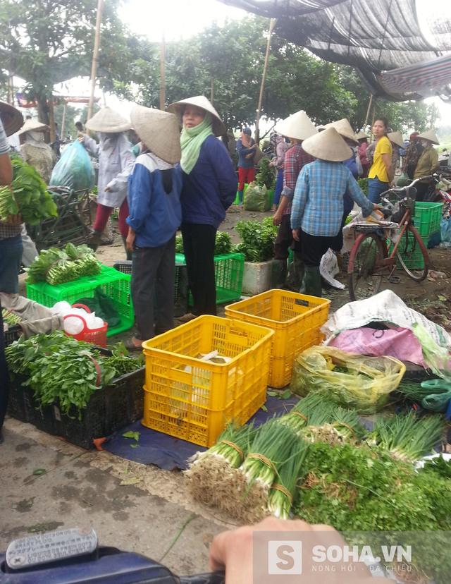 Một góc chợ đầu mối Vân Trì (xã Vân Nội - Đông Anh), nơi bà con mang rau ra nhập cho lái buôn, khách mua lẻ. (Ảnh: Hà Khê)