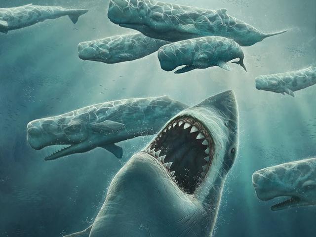Siêu cá mập Megalodon - Loài sát thủ hung tợn nhất lịch sử Trái Đất này có thể dài tới 30 m và nặng hơn 100 tấn.