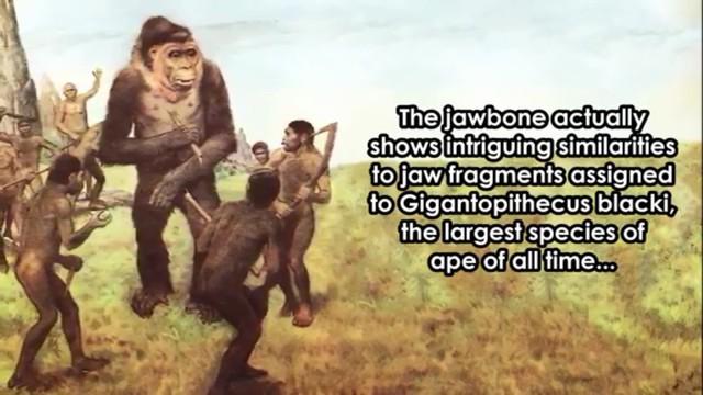 TheoLive Science, phát hiện này cho thấy nhiều chủng người (đã tuyệt chủng) có thể từng cùng tồn tại ở châu Á trước khi tổ tiên của người hiện đại xuất hiện ở khu vực này khoảng 40.000 năm trước.