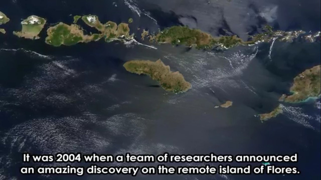 Năm 2004, một đội nghiên cứu thông báo một khám phá tuyệt vời của họ trên hòn đảo hẻo lánh của Flores
