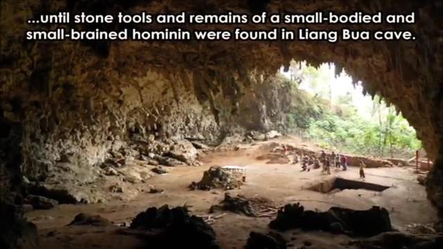 Bộ não và cớ thể nhỏ, có thể dùng công cụ đá và lửa. Đây là các khám phá tại hang động Liang Bua.