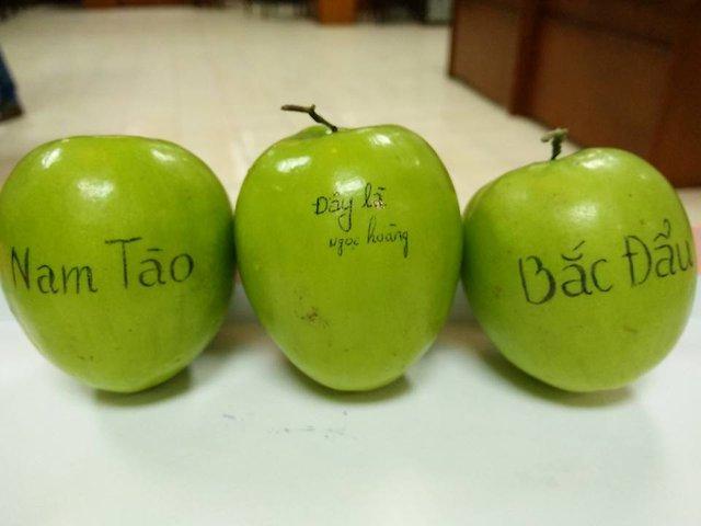 3 vai diễn chính của cung đình Táo Quân 2016 đã được hé lộ trên những quả táo rất to.