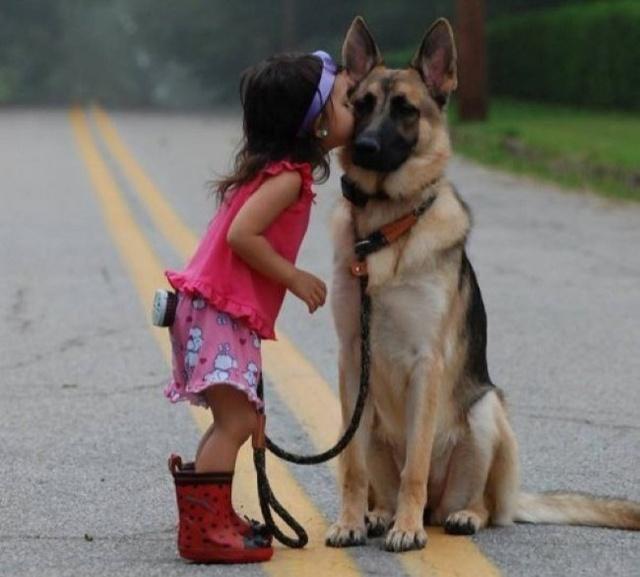 Người cận vệ nghiêm trang và cô chủ nhỏ