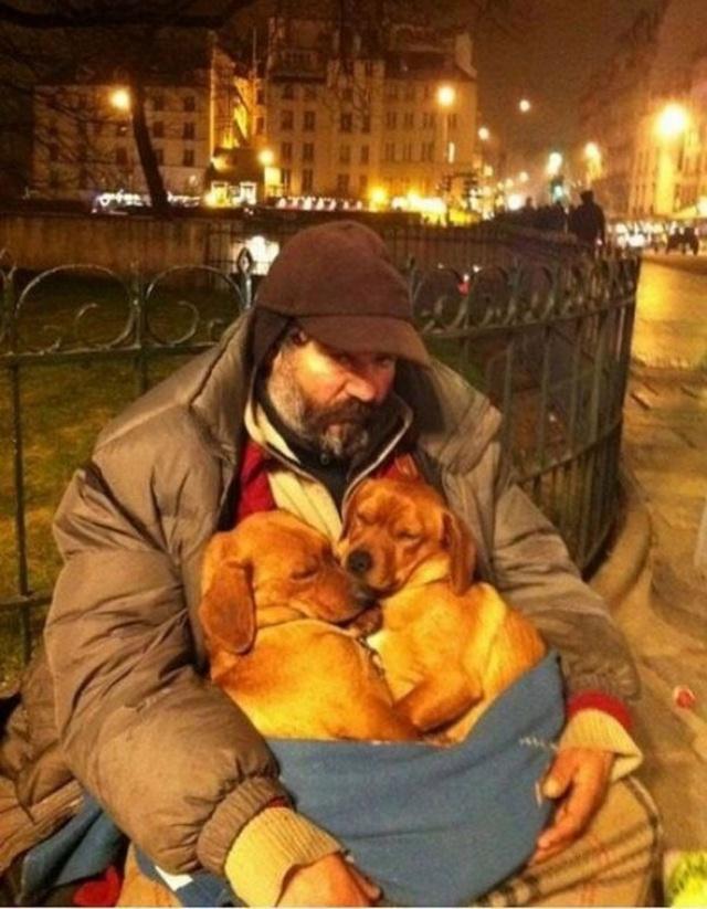 Tình yêu thương sưởi ấm lòng người.