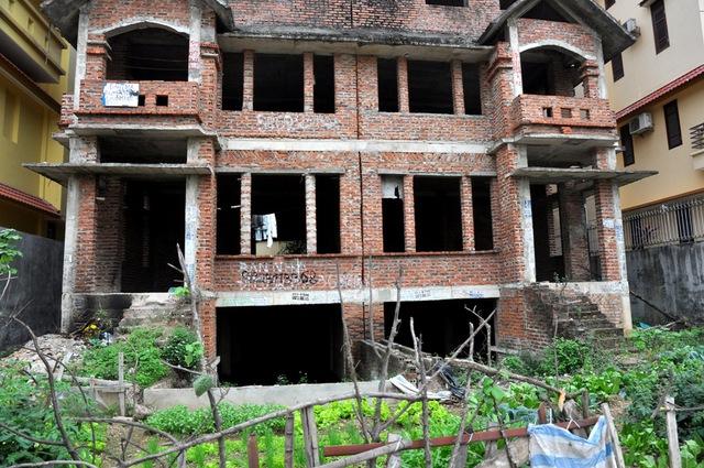 Để tránh tình trạng lãng phí, nhiều người dân sống xung quanh các căn biệt thự thự bỏ hoang này đã cải tạo lại khoảng đất trống quanh biệt thự để trồng rau.