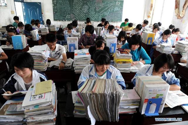 Áp lực học đường là nguyên nhân chủ yếu khiến nhiều học sinh, sinh viên tìm đến cái chết.