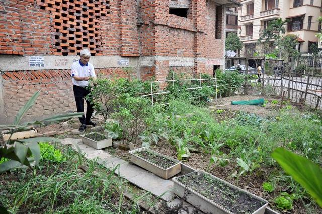 Ông Lưu Trường Đệ (68 tuổi, Trung Văn, Hà Nội) đang cải tạo thêm một khu đất để trồng rau sạch.