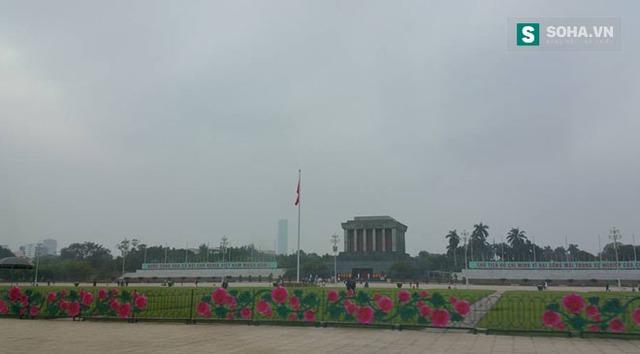 Dàn hoa hồng khi chưa được tháo dỡ nằm ở trước cửa Lăng Bác.