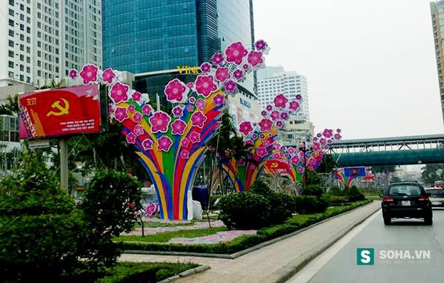 Các cây đào trang trí trên đường Nguyễn Chí Thanh.