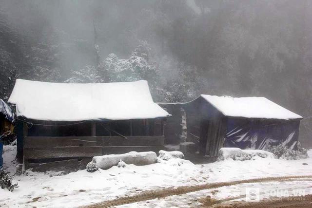 Ở các huyện miền núi Nghệ An, tuyết bắt đầu rơi từ ngày 24/1 và trong ngày 25/1 tiếp tục rơi nhiều và dày hơn. (Ảnh: Bằng Trần).