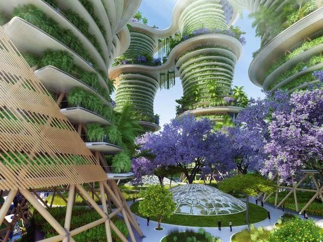 Gỗ sẽ là chất liệu chính của toàn bộ công trình, một cách giúp con người tìm về với thiên nhiên.