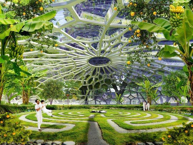 Một khu vườn xanh.
