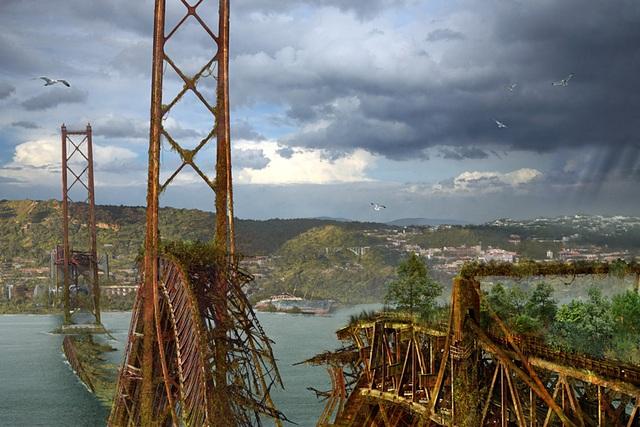 Cây cầu đổ sập