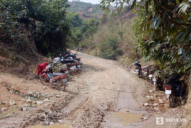 Mỗi ngày, có hàng trăm lượt người dân vào rừng để khai thác, tận thu gỗ quý.