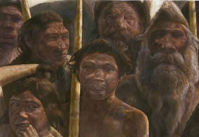 Người Denisovalà tên được đặt cho phần di cốt của một cá thể thuộcchi Ngườicó thể là một loài trước đây chưa biết dựa trên một phân tích ADNti thểcủa nó .