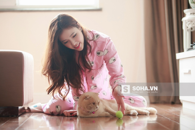 Cả Ngọc Phượng và Mai Phương Thúy đều rất yêu mèo. Khi liên lạc với em gái, Mai Phương Thúy không quên hỏi về chú mèo mũm mĩm này.