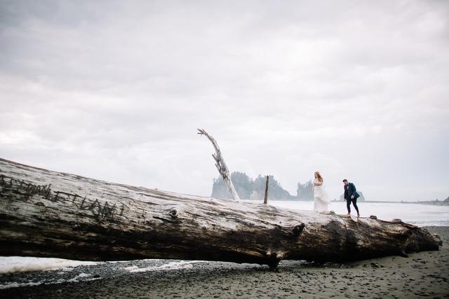 Những gốc cây khổng lồ bên cạnh bờ biển được nhiều người thích thú chọn làm địa điểm chụp ảnh cưới.