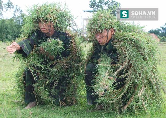 Ngụy trang cỏ.