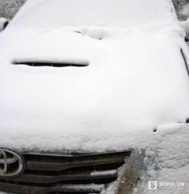 Các phương tiện đông cứng, không thể di chuyển vì tuyết.