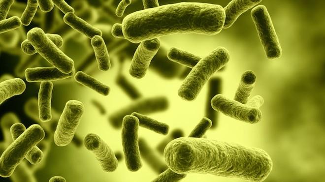 Botulinum H: Chất độc tự nhiên khủng khiếp nhất đối với con người - Ảnh 5.