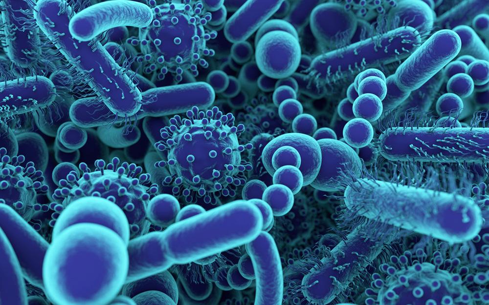 Whitmore không ăn thịt người, còn vi khuẩn thật sự ăn thịt người lại không phải Whitmore! - Ảnh 1.